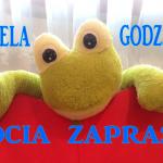FROCIA ZAPRASZA!